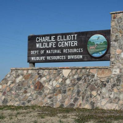 Charlie Elliott Wildlife Center